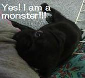 Yes!I am a monster!!!.JPG